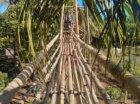 Bohol - Coco farm hostel bamboo skywalk 2