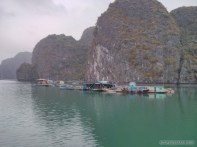 Cat Ba - Halong Bay tour fish farm 3