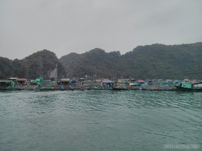 Cat Ba - Halong Bay tour floating village 2