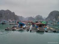 Cat Ba - Halong Bay tour floating village 4