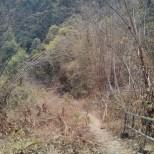 Chiang Mai trekking - day 1 trail 1