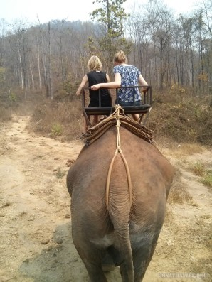 Chiang Mai trekking - elephant riding 4