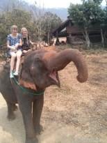 Chiang Mai trekking - elephant riding 7
