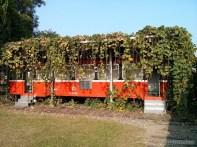Chiayi - railway park 3