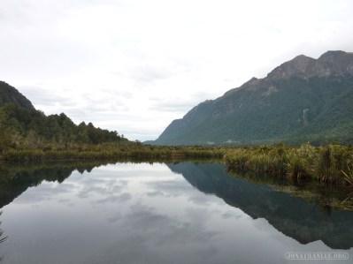 Fiordlands - scenery 1