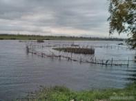 Hoi An - biking lake view 4