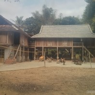 Mai Chau - house on stilts 1