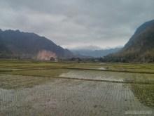 Mai Chau - rice fields 16