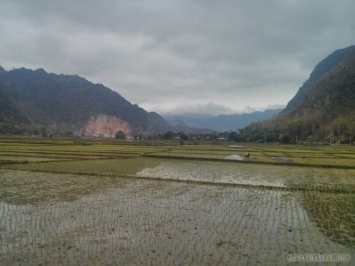 Mai Chau - rice fields 16