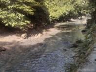 Moalboal - Kawasan water falls path 2