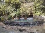 Moalboal - Kawasan water falls path 4
