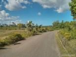 Moalboal - biking view 2