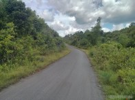 Moalboal - biking view 5