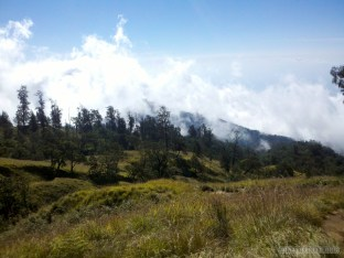 Mount Rinjani - first day scenery 1