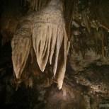 Pang Mapha - caving trip fossil cave 5