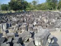 Prambanan - rubble 4