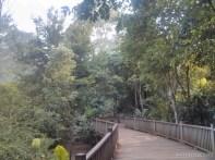 Pyin U Lwin - National Kandawgyi Gardens aviary 1
