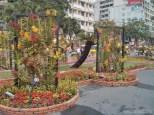 Saigon during Tet - flower street 12