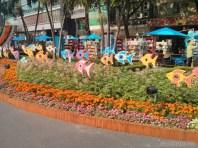 Saigon during Tet - flower street 38