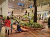 Singapore airport 1