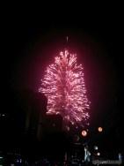 Taipei 101 New Years fireworks - fireworks 1