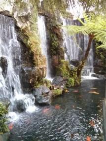 Taipei - Longshan pond