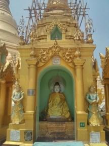 Yangon - Shwedagon pagoda 17