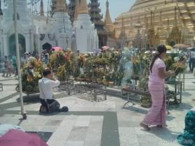 Yangon - Shwedagon pagoda 7