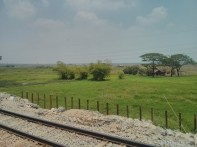Yangon - circular train view 10