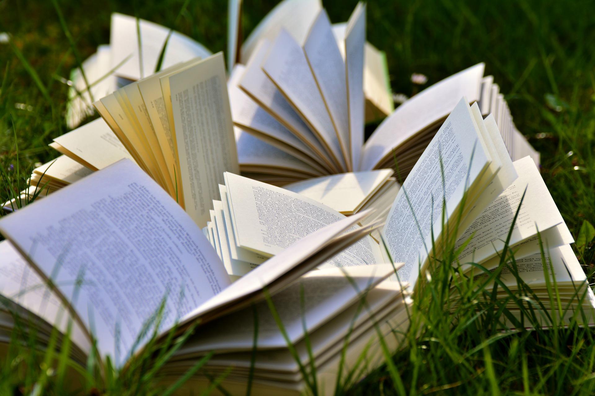 El narrador ideal para tu historia (mezcla de narradores)