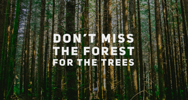 Don't Miss The Forest For The Trees