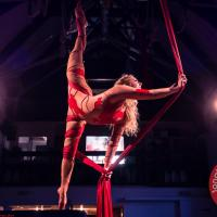Performance photographer - From pole dancing to stilt walking