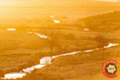 A weaving river at sunrise, Devon