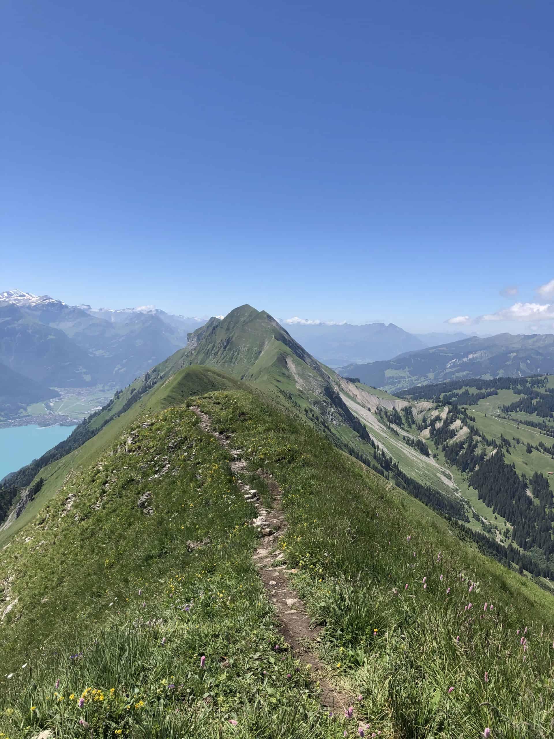 IMG 6152 scaled - Brienzer Gratwanderung - ein schmaler Grat