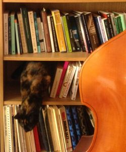 Cat jumping out of the music section of my bookshelves, to illustrate tempo article