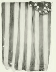 Williamdriverflag