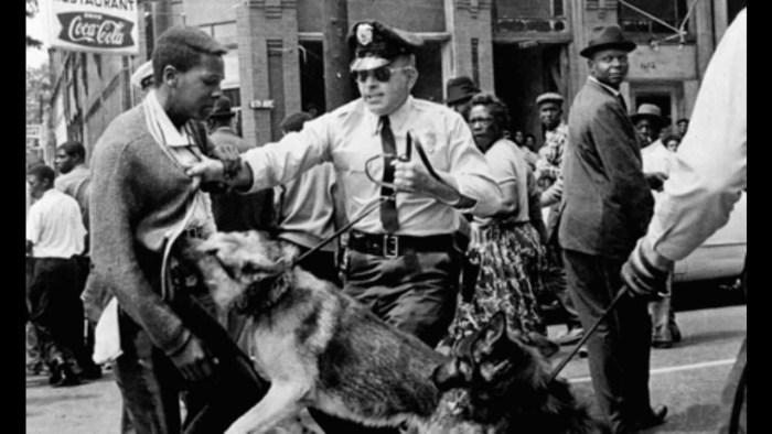 police-dog-attacks-man
