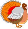 thumb_turkey_bright