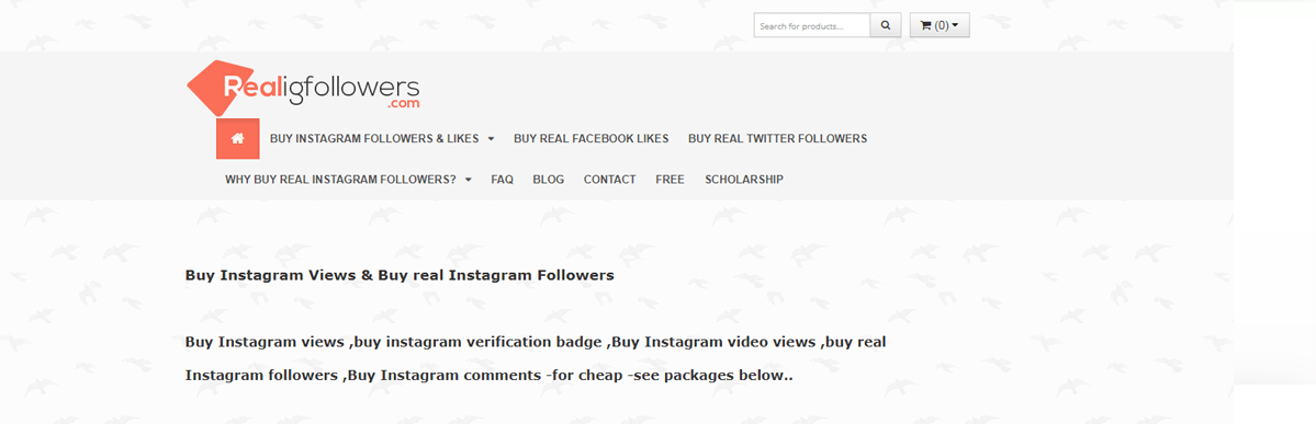 RealIGFollowers Review – Is Real IG Followers a Scam