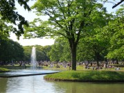 A fan of the dead pop star, Yumi becomes entangled in Kenji's investigation after going to a memorial vigil for the idols in Yoyogi Park.