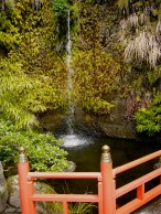One of the most scenic shrines in Japan, it's in a hidden grotto lined with ferns and waterfalls.