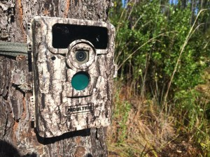 Moultrie D555i Trail Camera