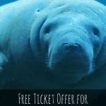 Florida Resident Free Ticket Offer for SeaWorld Orlando