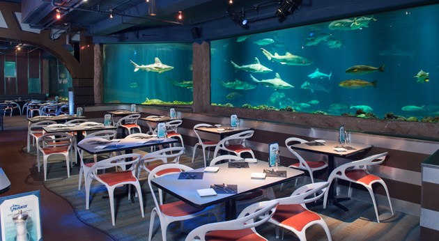 SeaWorld Orlando Sharks Underwater Grill Magical Dining Month
