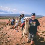 jones family llama hike