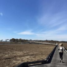 race 4 long bridge