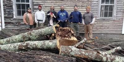 Blue Oak Blog