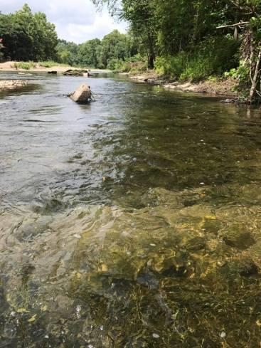 2017JUL4 river clear bottom