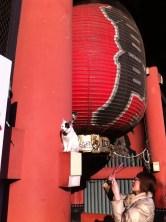 Cats as Sensō-ji temple