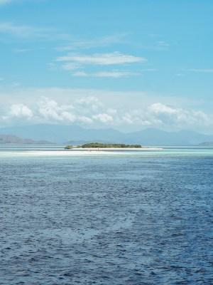 komodo island tour, komodo tours, komodo island diving, pulau komodo tour, komodo trip, labuan banjo tour, komodo island trip, komodo island boat trip, komodo boat trip